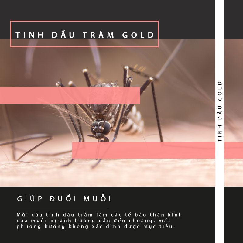 Duoi-Muoi-Voi-Tinh-Dau-Tram (5)